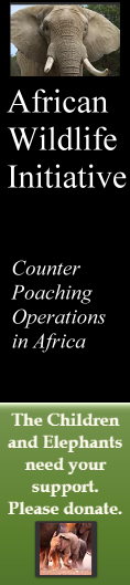 African Wildlife Initiative #2